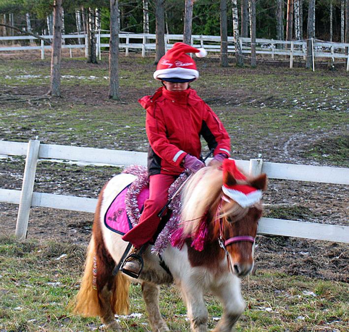 Horse+