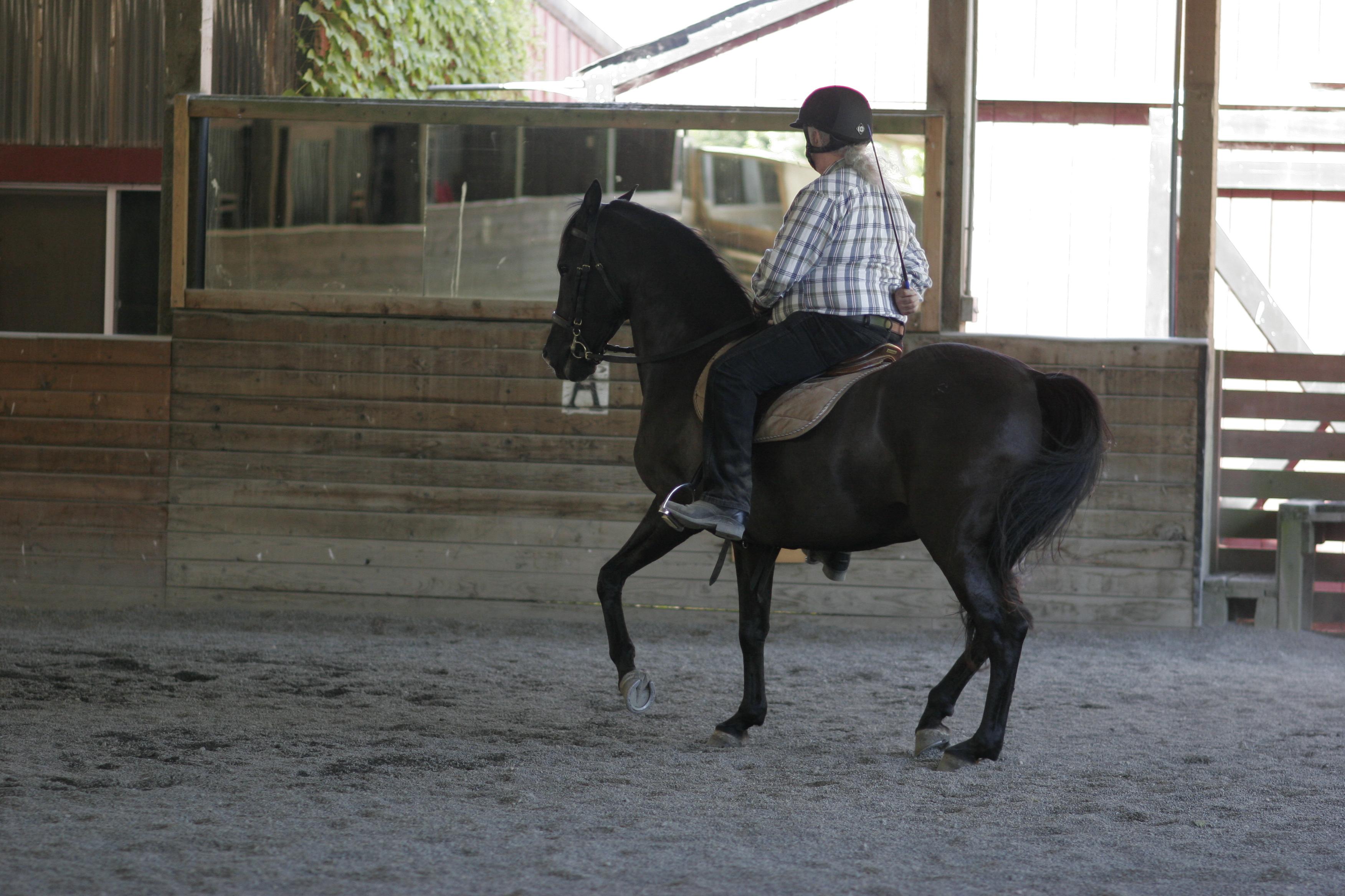 Craig Stevens riding Lochinvar