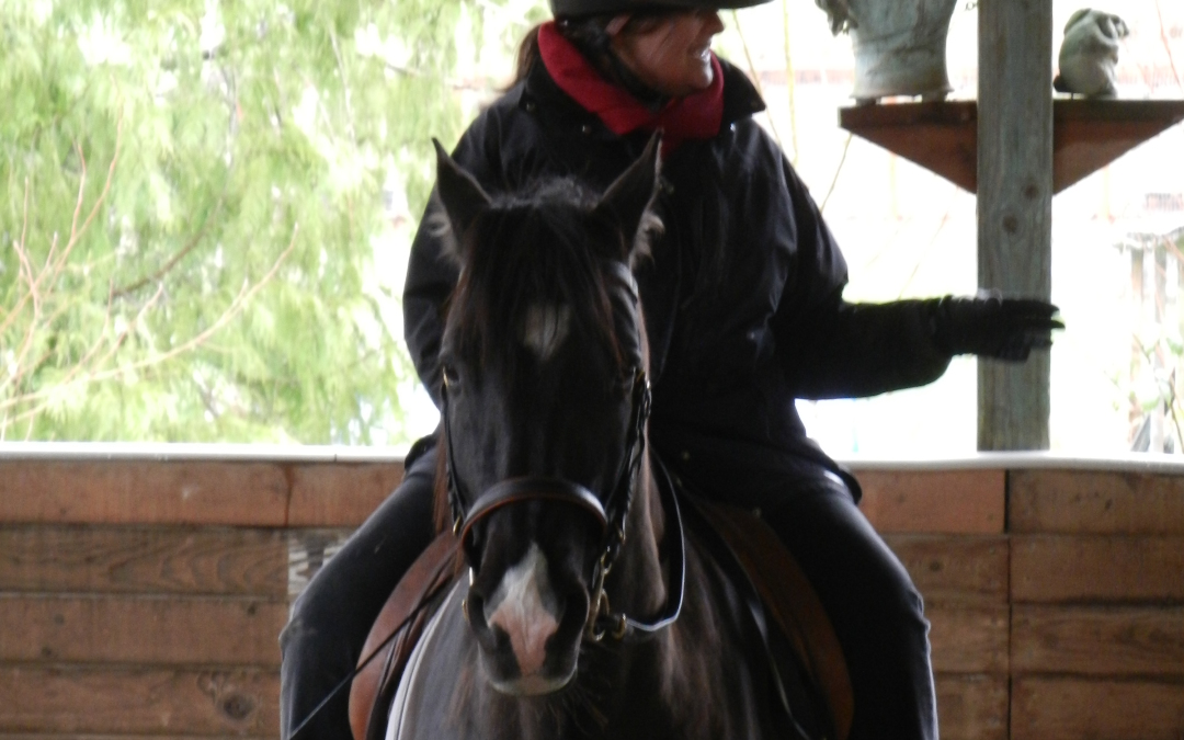 Paradoxical dressage