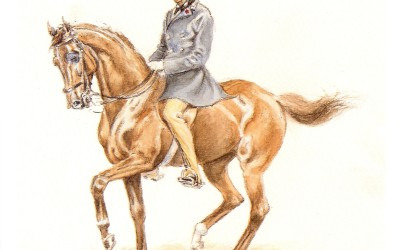 Objects of dressage